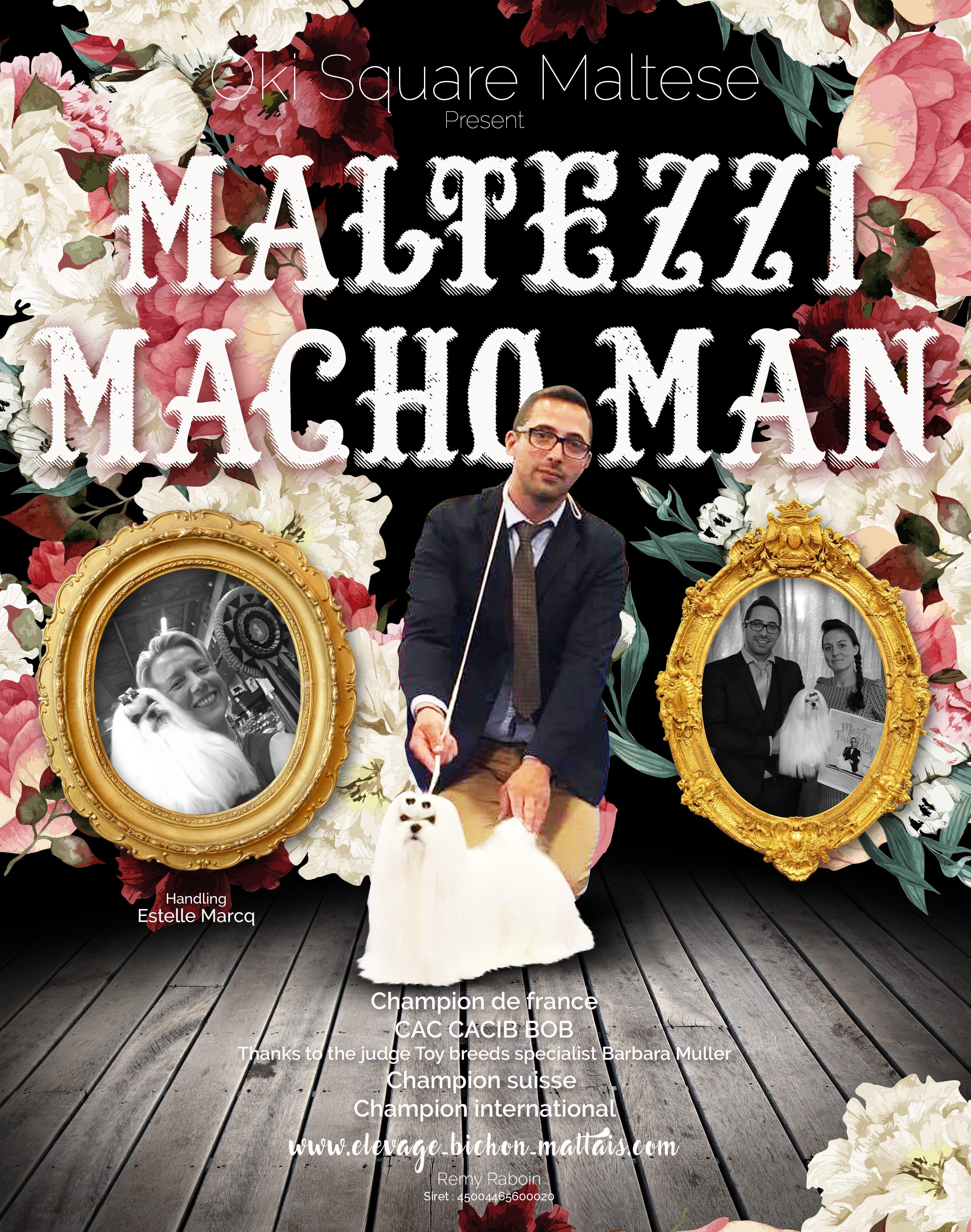 Oki Square Maltezzi Macho Man